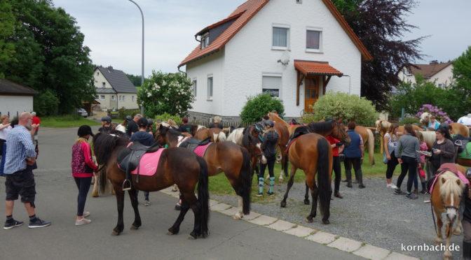 Großer Andrang beim Pferdewiegen in Kornbach