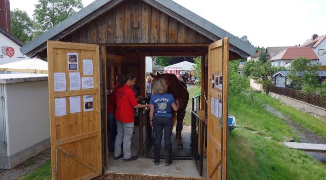 Pfingstmontag ohne Pferdewiegen