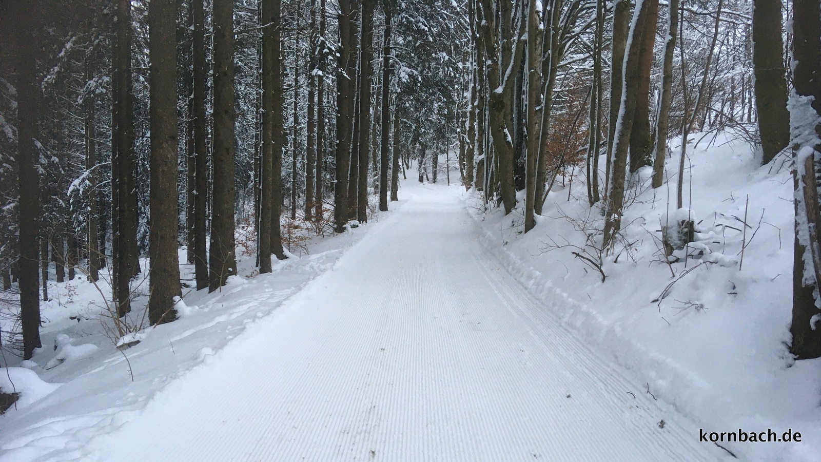 Wanderweg in Kornbach